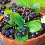 Полезные свойства и калорийность черноплодной рябины